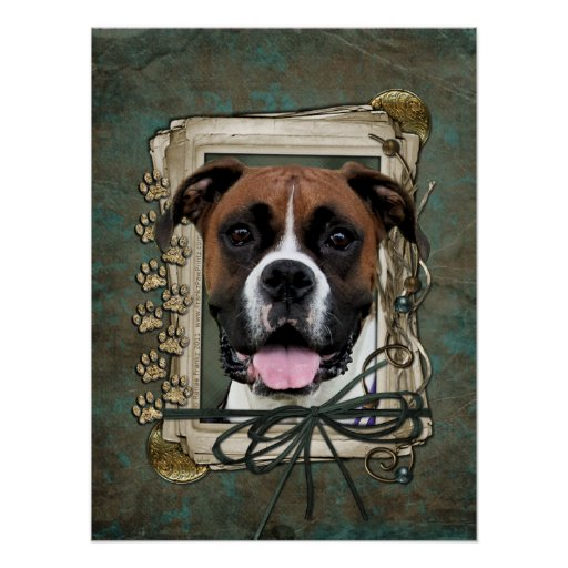 Fathers Day - Stone Paws - Boxer - Vindy Poster