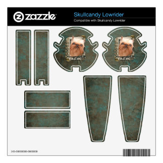 Fathers Day - Stone Paws - Brussels Griffon Skullcandy Lowrider Skins
