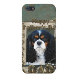 Fathers Day - Stone Paws - Cavalier - Dad Cases For iPhone 5