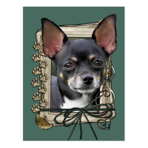 Fathers Day - Stone Paws - Chihuahua - Isabella Postcard