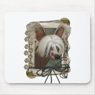 Fathers Day - Stone Paws - Chinese Crested - Jaspe Mouse Pad
