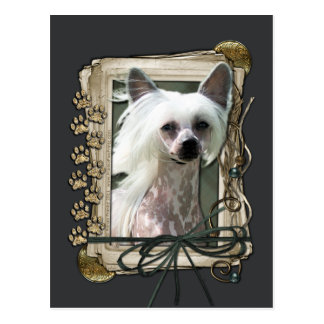 Fathers Day - Stone Paws - Chinese Crested - Kahlo Postcard