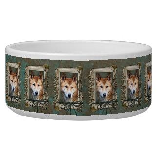 Fathers Day - Stone Paws - Dingo Dog Bowls