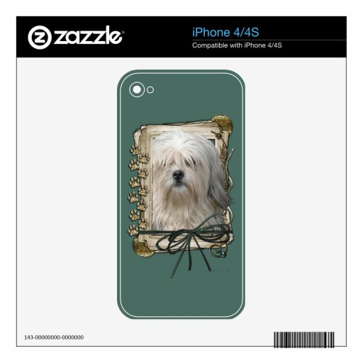 Fathers Day - Stone Paws - Lowchen iPhone 4 Decals
