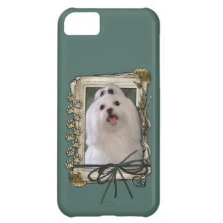 Fathers Day - Stone Paws - Maltese Cover For iPhone 5C