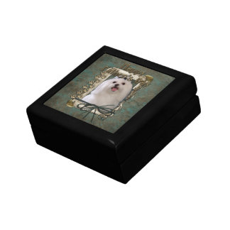 Fathers Day - Stone Paws - Maltese Gift Box