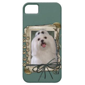 Fathers Day - Stone Paws - Maltese iPhone SE/5/5s Case