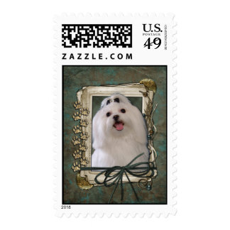 Fathers Day - Stone Paws - Maltese Postage
