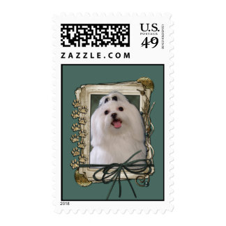 Fathers Day - Stone Paws - Maltese Stamp