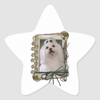Fathers Day - Stone Paws - Maltese Star Sticker