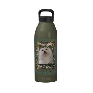 Fathers Day - Stone Paws - Maltese Drinking Bottles