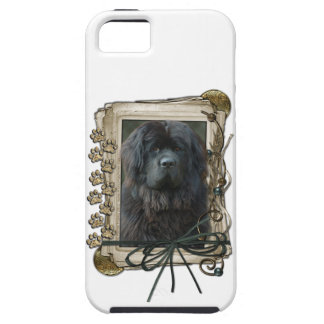 Fathers Day - Stone Paws - Newfoundland iPhone SE/5/5s Case