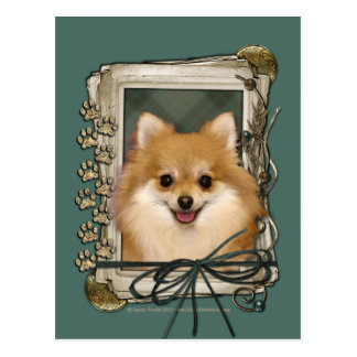 Fathers Day - Stone Paws - Pomeranian Post Cards