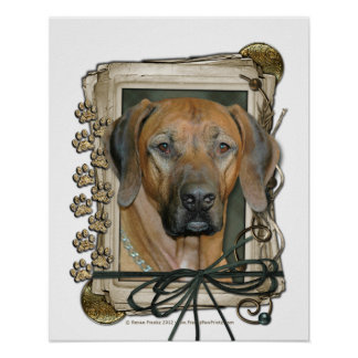 Fathers Day - Stone Paws - Rhodesian Ridgeback Poster