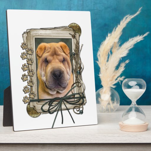 Fathers Day - Stone Paws - Shar Pei Display Plaque