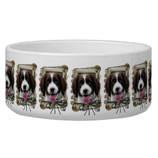 Fathers Day - Stone Paws - Springer - Baxter Bowl