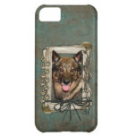 Fathers Day - Stone Paws - Vallhund iPhone 5C Cover