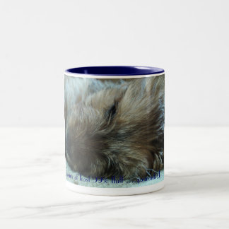 fattie asleep puppy, contains at least 99% fluf... Two-Tone coffee mug