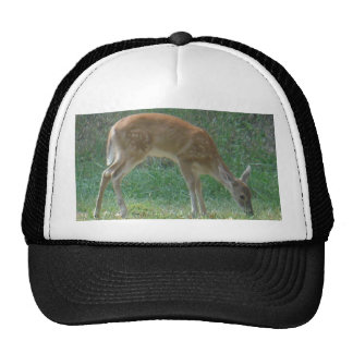 faun deer at Lake Arrowhead Trucker Hat