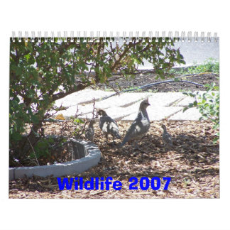 Fauna 2007 calendarios