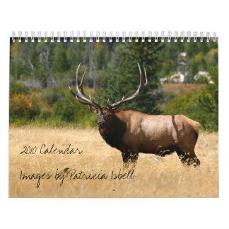 Fauna 2010 imágenes del calendario de Patricia