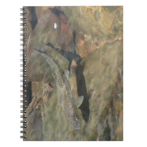 Fauna acuática de la flora de Oregon del barranco  Libretas