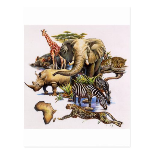 Fauna africana en concierto postal
