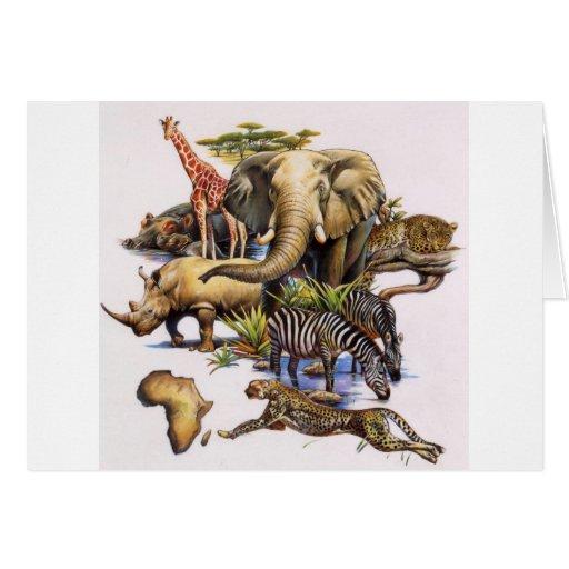 Fauna africana en concierto tarjeton