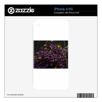 FAUNA and FLORA iPhone 4S Skins