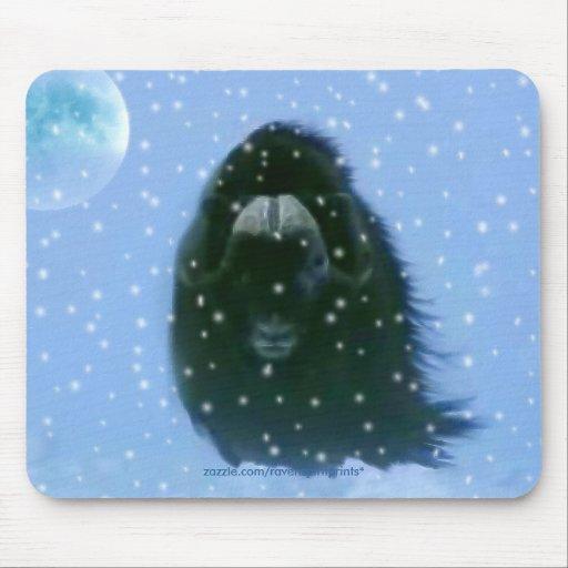 Fauna animal ártica SALVAJE Mousepads del BUEY de  Alfombrillas De Raton