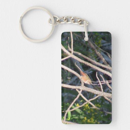 Fauna animal de Aves del pájaro de Oregon del barr Llavero