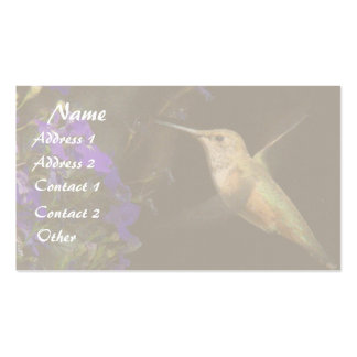 Fauna animal del pájaro del colibrí floral tarjetas de visita
