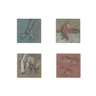 Fauna británica en un sistema de cuatro imanes de imán de piedra
