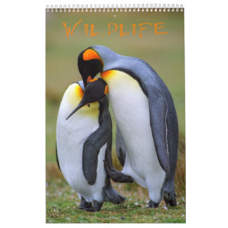 Fauna Calendarios