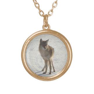 Fauna canadiense - coyote en invierno grimpola personalizada