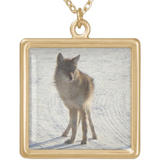 Fauna canadiense - coyote en invierno joyeria