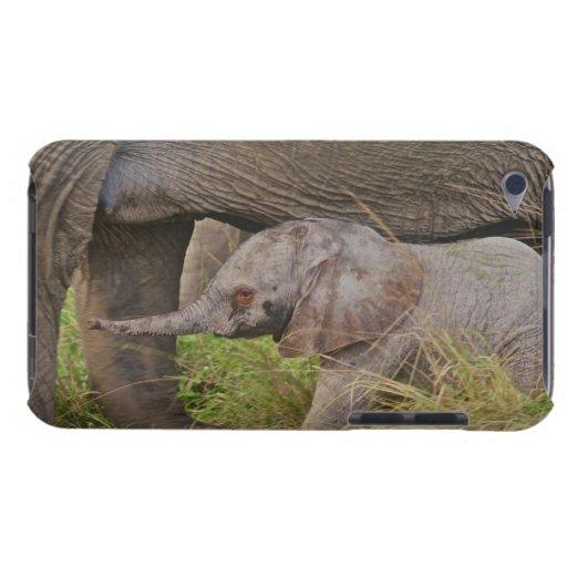 Fauna de África, Kenia, elefante del bebé Funda iPod