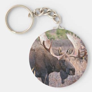 Fauna de Alaska Llavero Redondo Tipo Pin