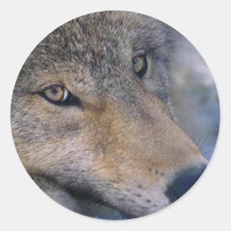 Fauna de Alaska Pegatina Redonda