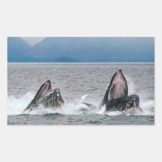 Fauna de Alaska Pegatina Rectangular