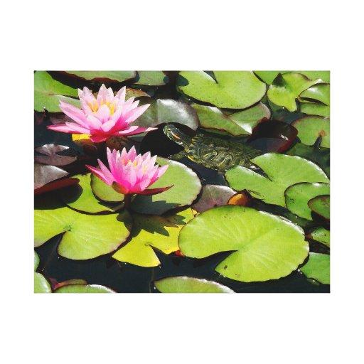 Fauna de la tortuga de la flor de Waterlily del Lona Estirada Galerias
