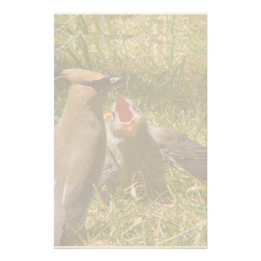 Fauna de los animales del pájaro del Waxwing de Papelería
