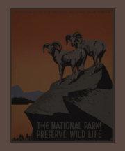 Fauna del coto de los parques nacionales de Améric