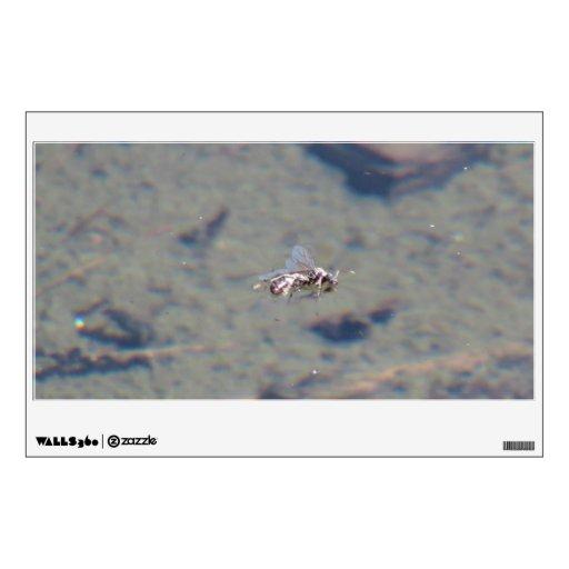 Fauna del insecto del arácnido de los insectos de