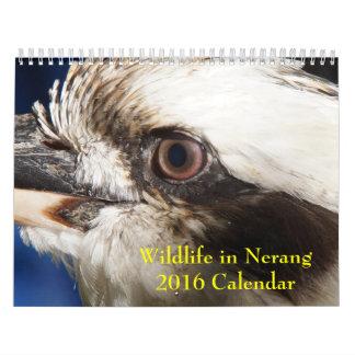 Fauna del MED en el calendario de Nerang 2016