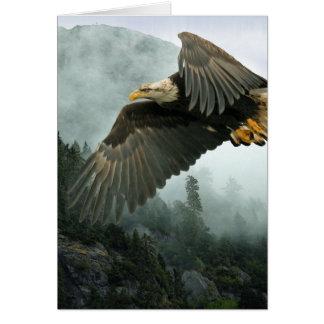FAUNA Eagle calvo y tarjetas de felicitación brumo