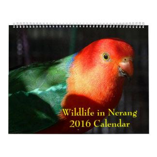 Fauna en el calendario de Nerang 2016