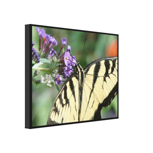 Fauna floral de las flores de mariposa de impresión en lienzo