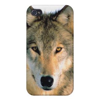 FAUNA IPhone 4 iPhone 4 Protector