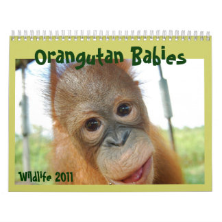 Fauna linda de los monos calendario de pared